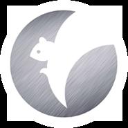 logo beeldmerk voor Squirrelcoin door Dickhoff Design in Amnsterdam